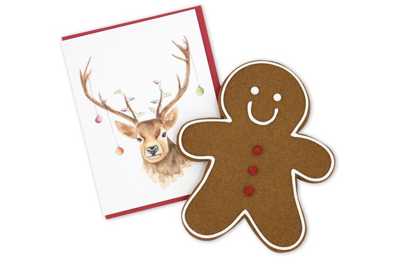 Duo carte et biscuit